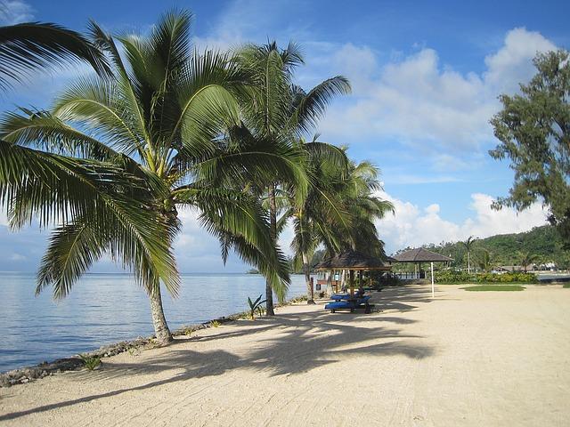 kokosové palmy na pláži
